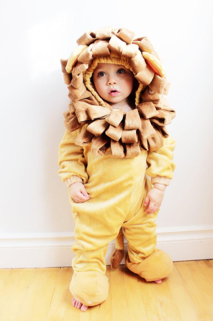 alastair lion costume canon baby moment halloween