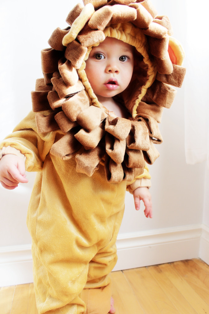 lion costume canon camera baby moments app