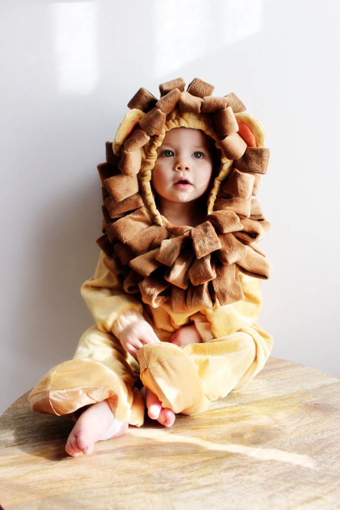 lion costume canon baby moments picture